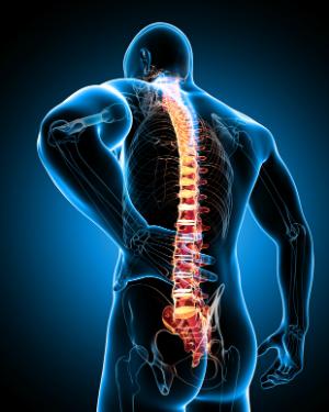 sports-massage-back-pain